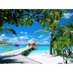 Bungalow Tropical Island...